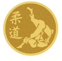 Judo - LM35